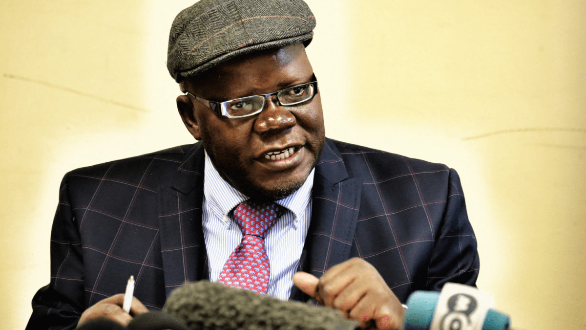 They Do Not Have The Right To Recall Us- Biti