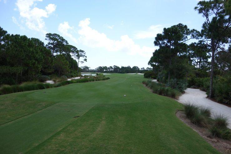 Tee shot on 11th at Floridan National Golf Club