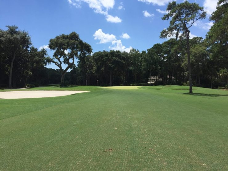 approach to 3rd hole at Harbour Town Links