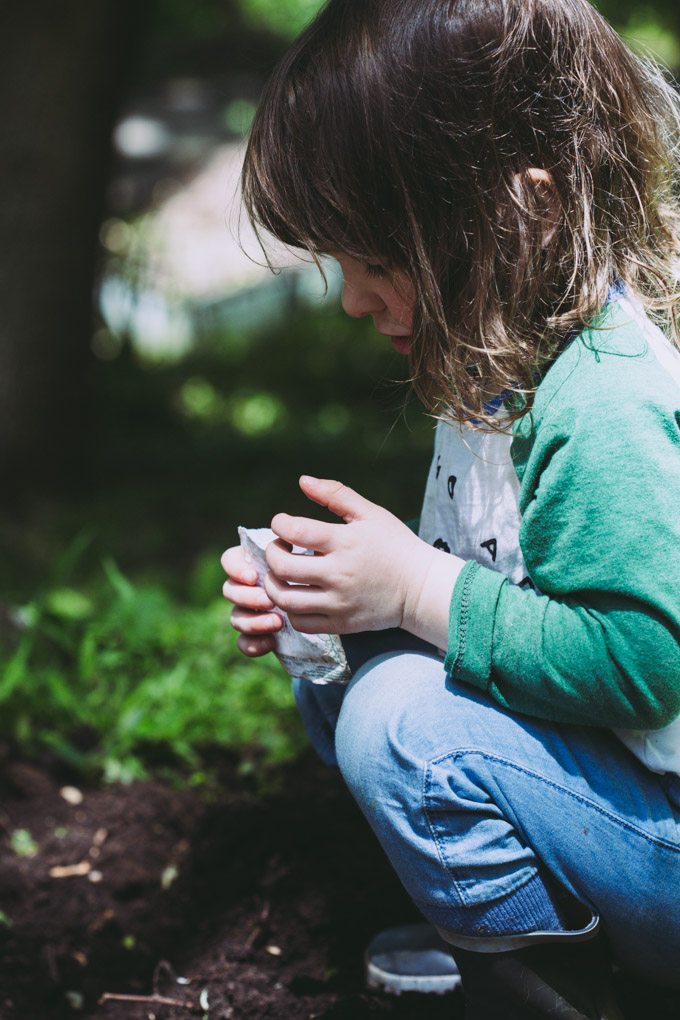 image of a young girl planting seeds in the garden