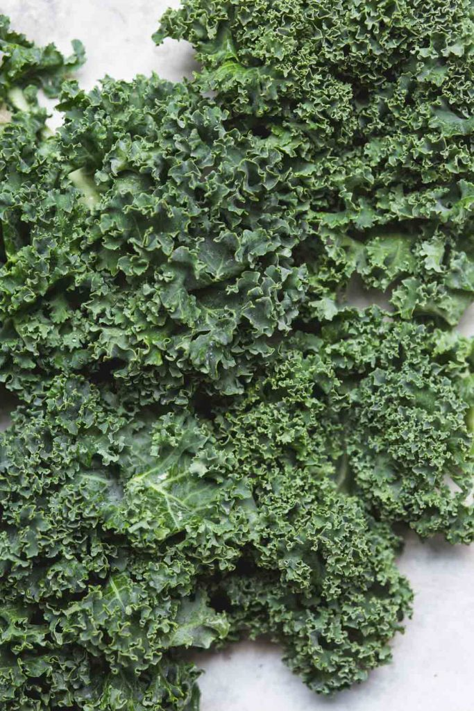 Close up flat lay image of green curly kale for vegan kale pesto