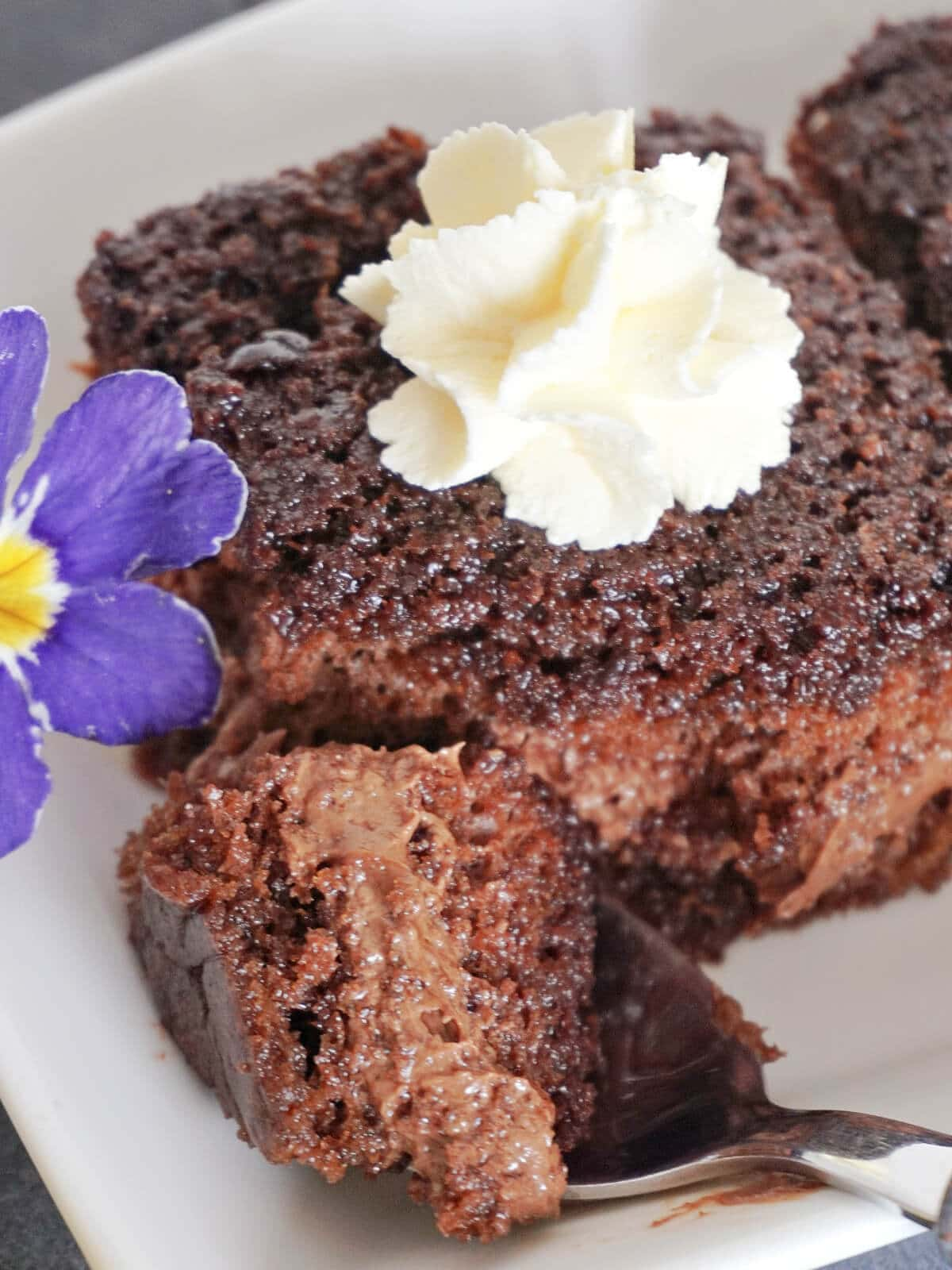 Close-up shot of a slice of chocolate and nutella cake