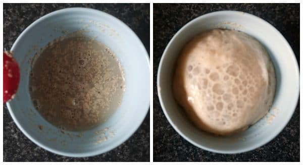 Collage of 2 photos to show how the yeast works for pumpkin cinnamon rolls
