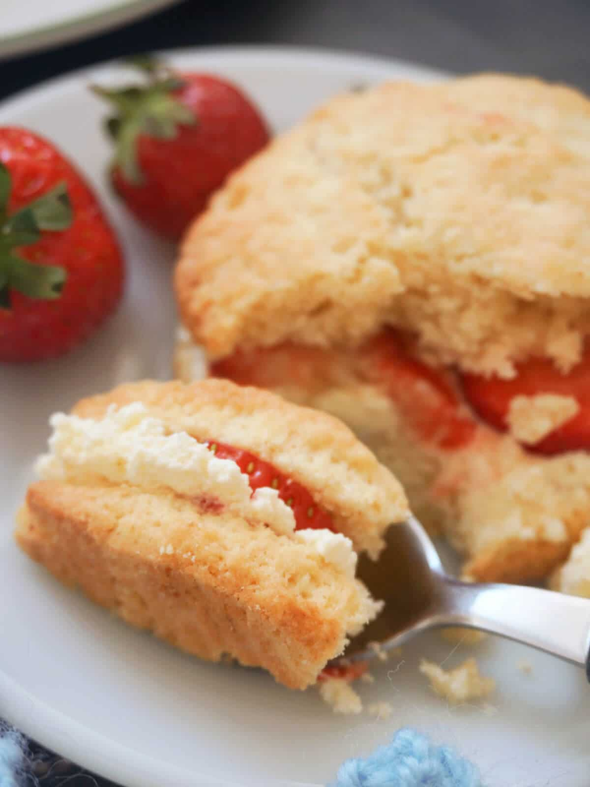 Close-up shot of a shortcake with cream and strawberries