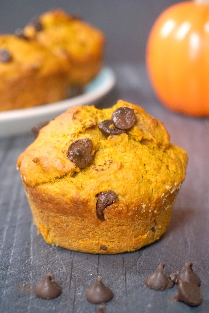 A pumpkin and chocolate chip muffin with a small pumpkin and a plate of other muffins in the background