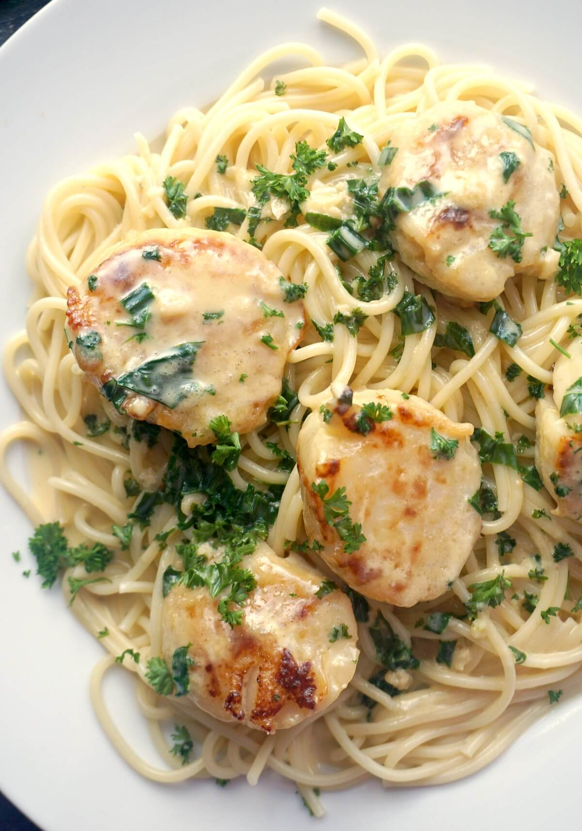 Close-up shoot of a plate with creamy spaghetti topped with scallops and chopped parsley