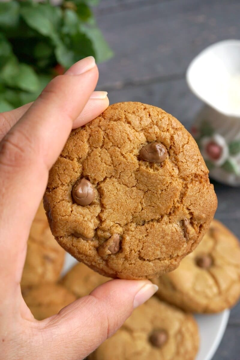 A hand holding a chocolate chip cookie