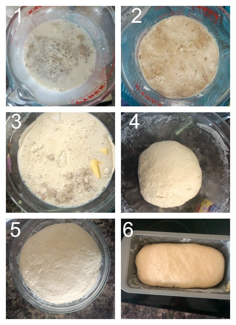 Collage of 6 photos to show how to make white sandwich bread