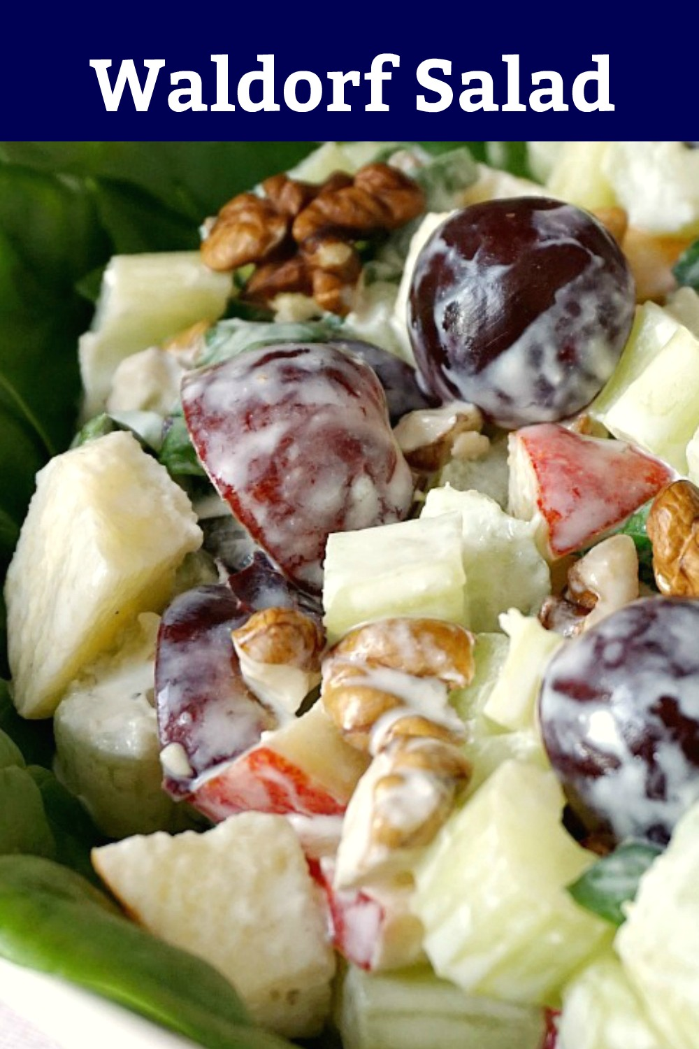 Close-up shoot of waldorf salad