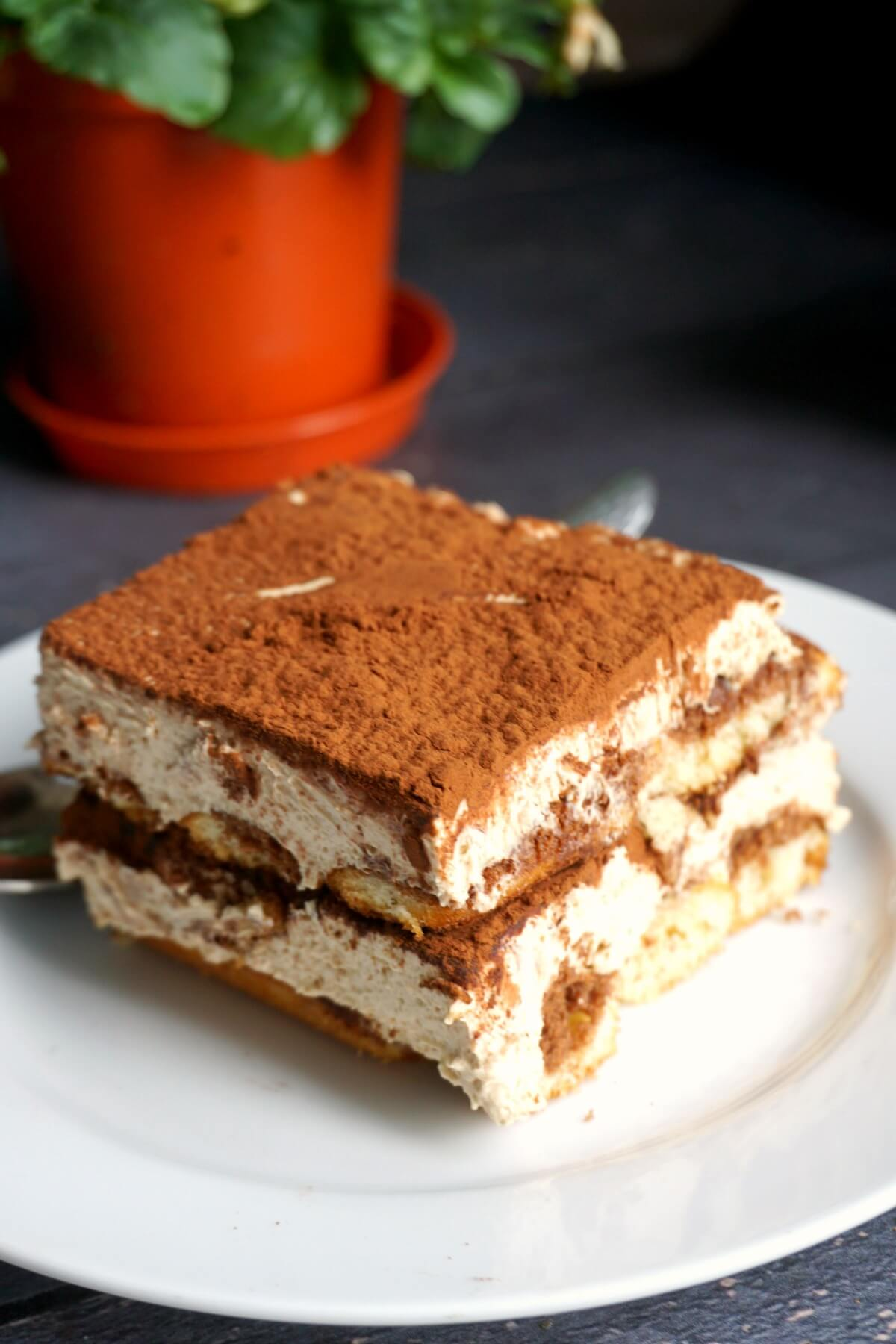 A slice of dalgona tiramisu on a white plate with a plant behind it