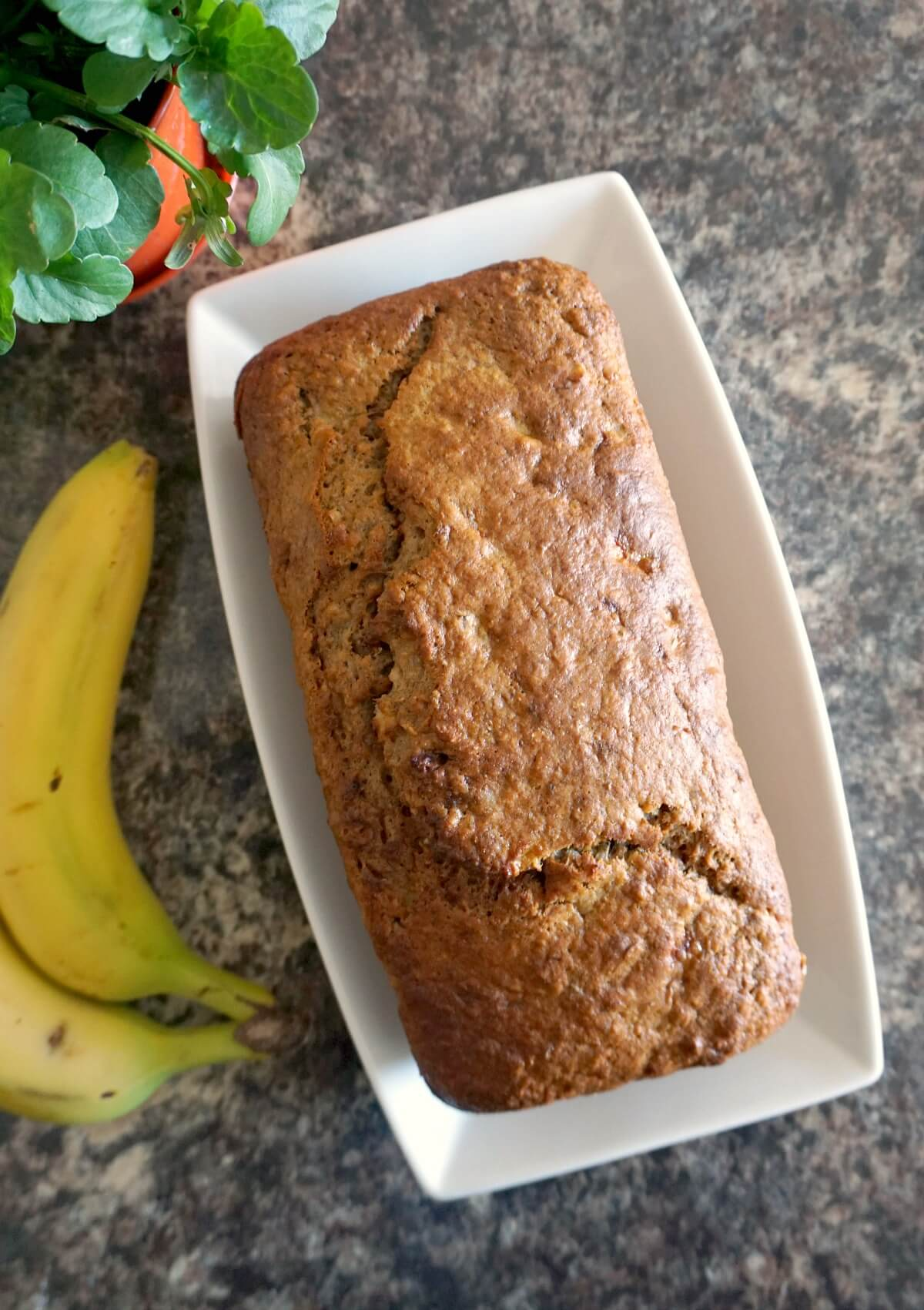 Overhead shoot of a white rectangle plate with a banana bread
