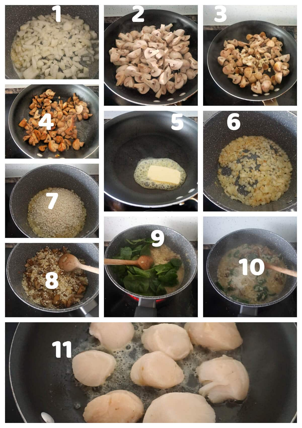 Collage of 11 pictures to show how to make mushroom risotto with seared scallops