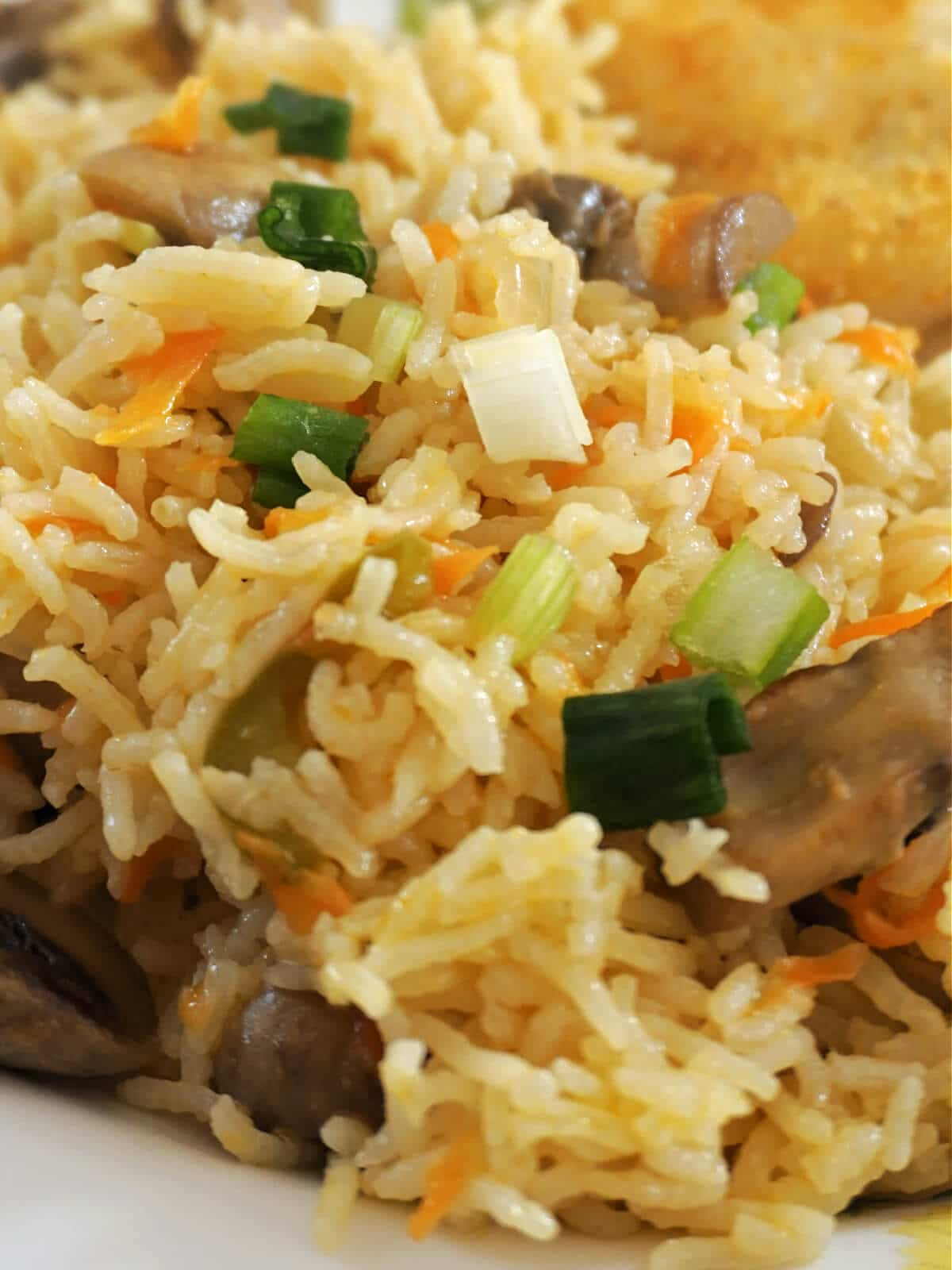 Close-up shot of vegetable rice