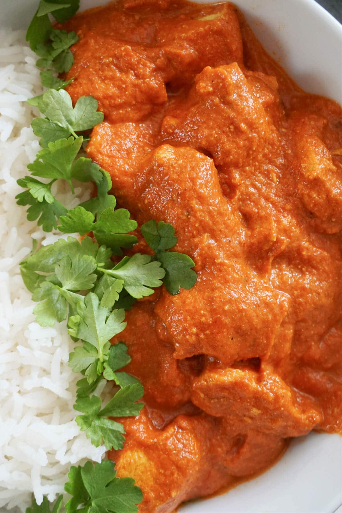 Close-up shot of chicken curry, rice and fresh parsley