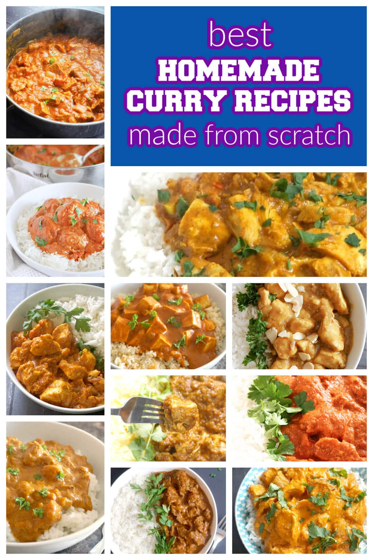 Collage of pictures with homemade curry recipes
