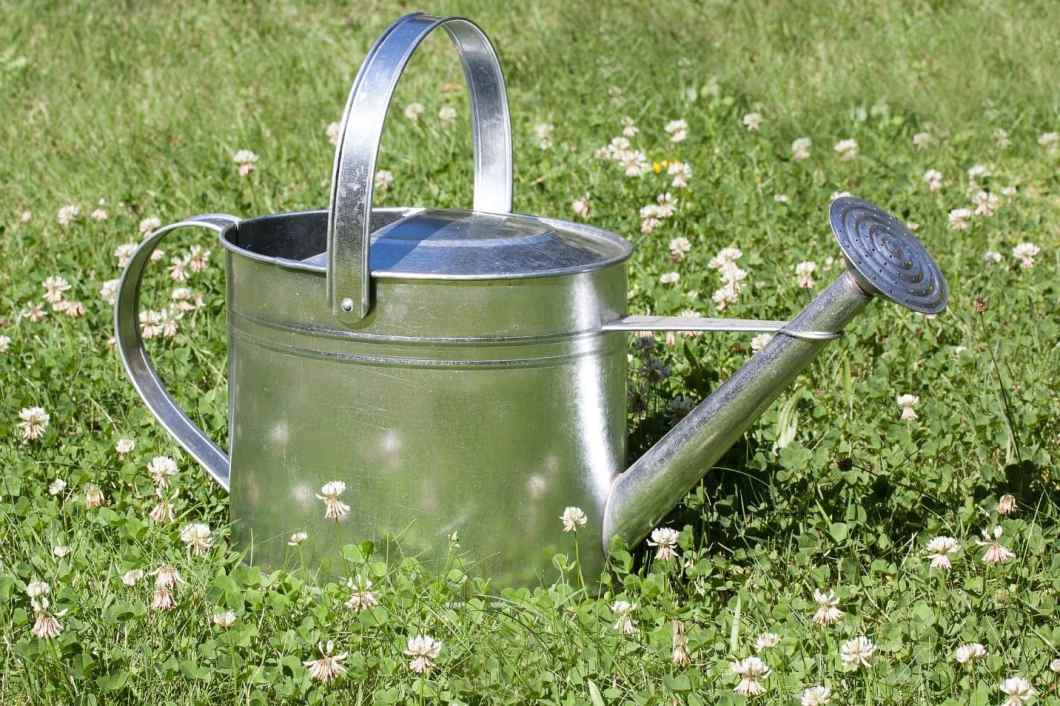 useful-lawn-care-tips-in-spring-6