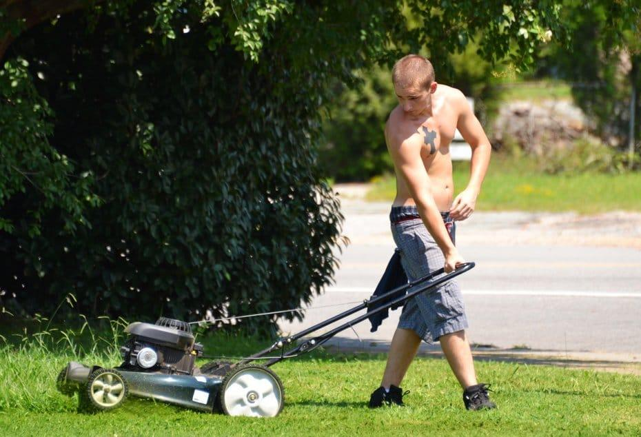 Choosing-the-best-corded-electric-lawn-mower-2