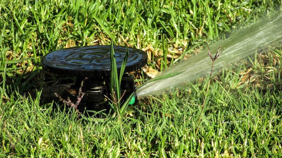 The-proper-fertilizing-schedule-for-your-lawns-2