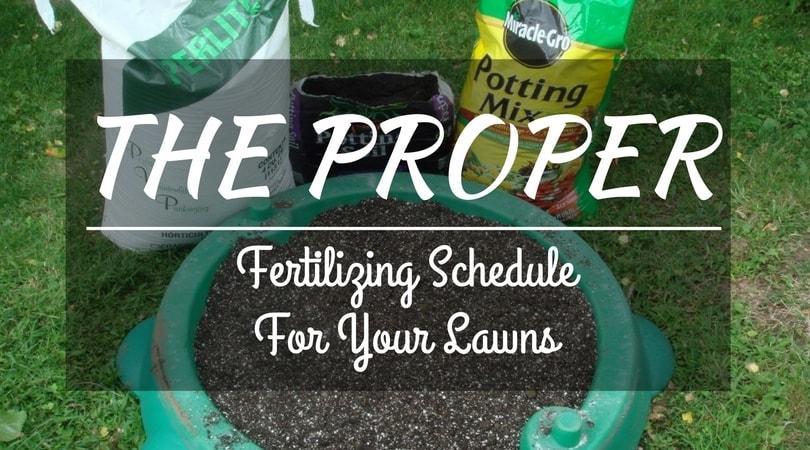 The-proper-fertilizing-schedule-for-your-lawns