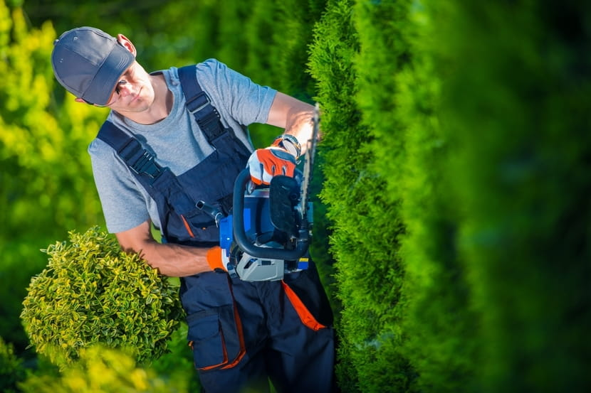 How-to-Choose-the-Best-Hedge-Trimmers-2