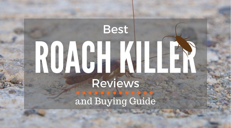 best-roach-killer-reviews