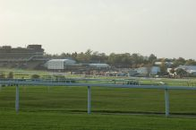 The Racetrack