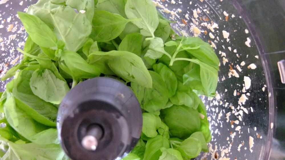 Nutritional Beast - Salty Basil Nut Spread (6/6)