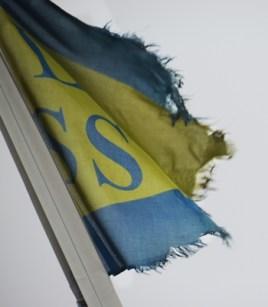 harbor pilots need new flag