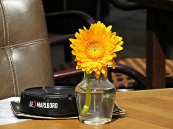 sunshine table