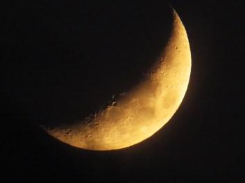 warsaw moon