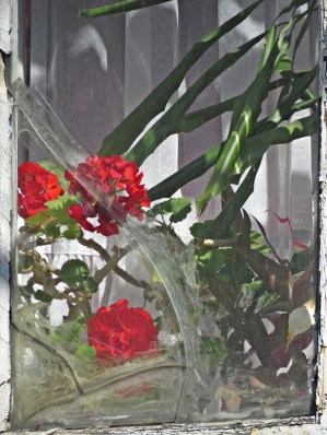 mala window