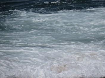 foz - reaching shore