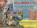 It's National Sea Monkey Day!