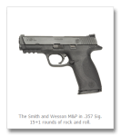 On the First Day of Christmas… A Smith & Wesson M & P