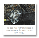 Swamp Thing: The Emergence – ZCORR Storage Bag Torture Test Results