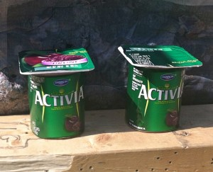 Activia Prune flavored yogurt waiting to be shot with hornady critical defense ammo