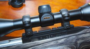 Mount the Nikon Prostaff scope and adjust eye relief
