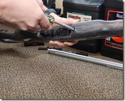 Ruger 10/22 remove stock