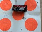 Winchester's PDX1 Defense load creates a large pattern with slug and buckshot.
