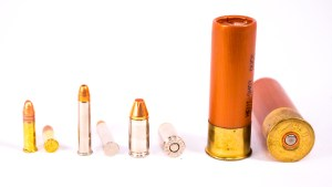Left to right: .22 long rifle rimfire, .22 Magnum rimfire, 9mm centerfire (notice the primer in the base) and 12-gauge shotgun, also centerfire.
