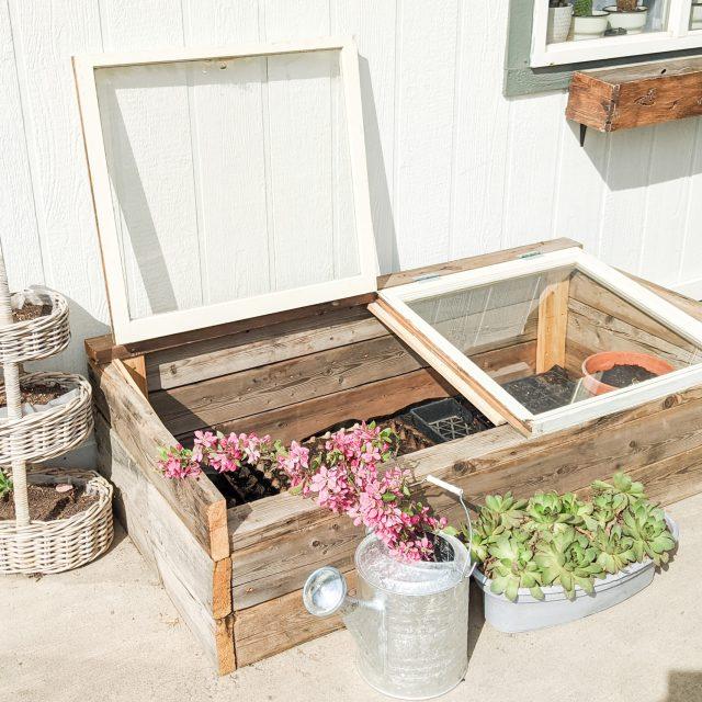 patio gardening archives my happy