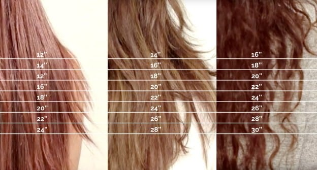hair length chart how to measure your hair length