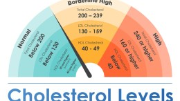 High Cholesterol Levels graph myhealthincheck com
