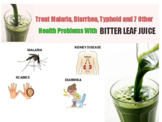 bitter leafleaf juice health benefits