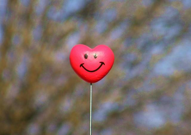 Understanding cardiovascular disease and making your heart happy