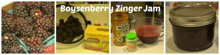 Boysenberry Zinger Collage