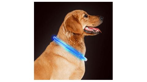 Takyu LED Dog Collar