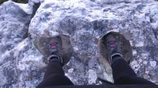 Dinosaur footprints?