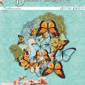 Alberto Juarez - my hobby my art -wonderful -Die Cuts de acetato Bloomsbury Alberto Juarez