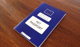 Thumbnail for the pet passport